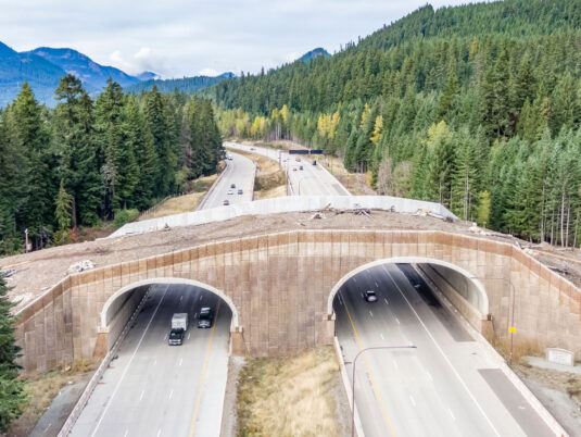 Snoqualmie Pass East Reinforced Wall